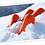 Thumbnail: 雪の下人参 「雪の下からこんにちは!」 500g/袋