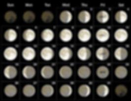 January-2020-Moon-Phases-Calendar.jpg