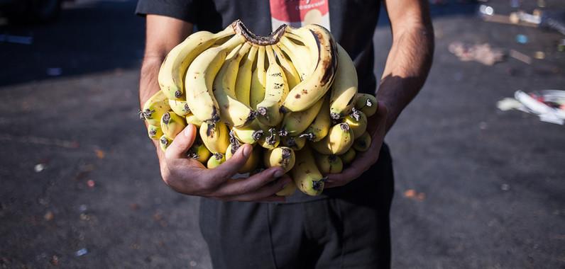 Masa Culutr: FoodTech for FoodWaste Nov.2018