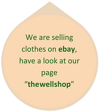 thewellshop ebay logo v2.png