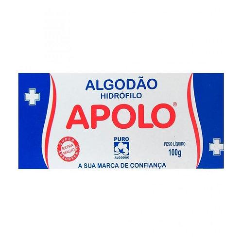 Algodão Hidrófilo Rolo 100g APOLO
