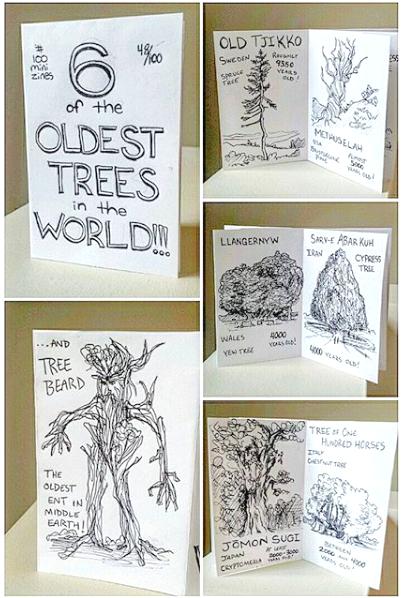 Oldest Trees Zine
