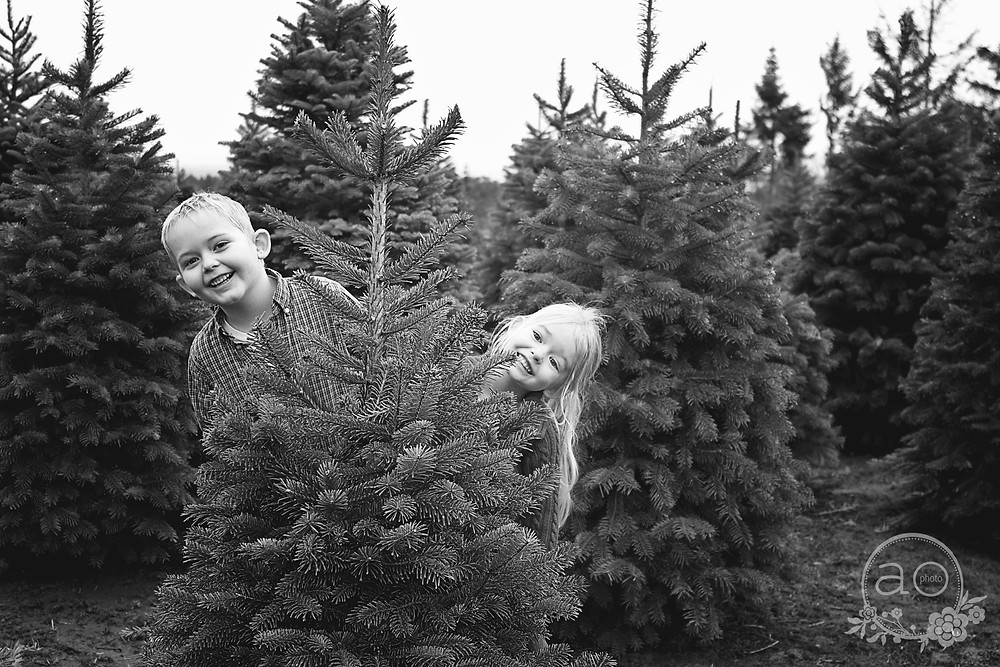Portland Family Photography | Helvetia Tree Farm