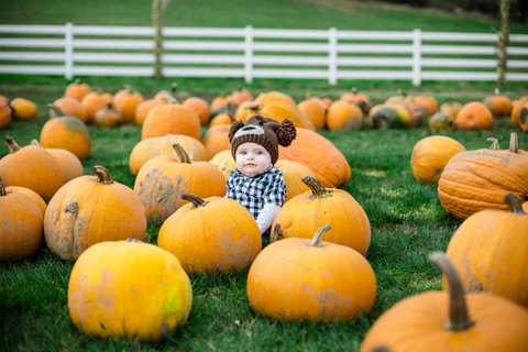 Pumpkin Patch Mini Sessions | Roloff Farms | Helvetia, OR