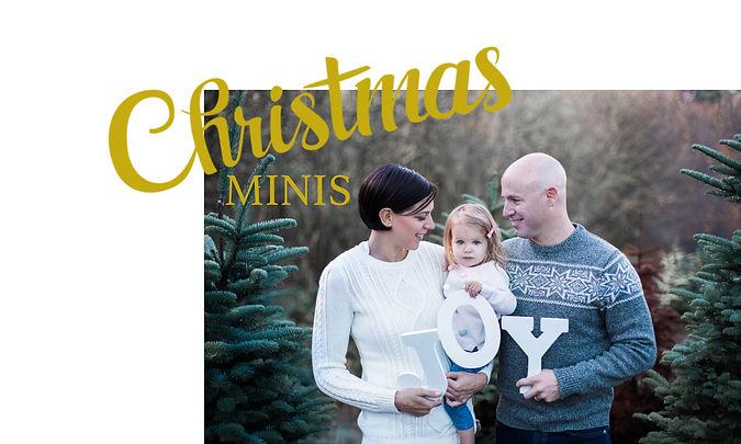 Christmas Mini Cover.jpg