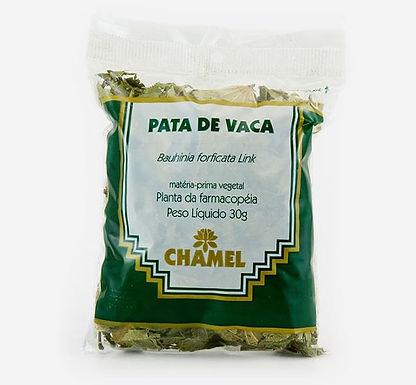 PATA DE VACA - 30g