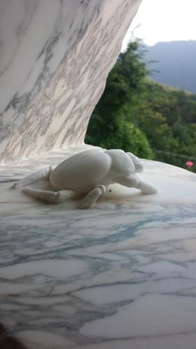 Ein kleiner Krebs aus Marmor genießt die Aussicht.