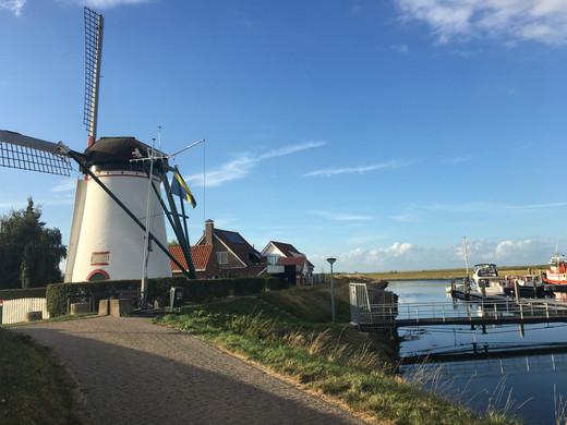 Die Windmühle am Hafen von Stavenisse.