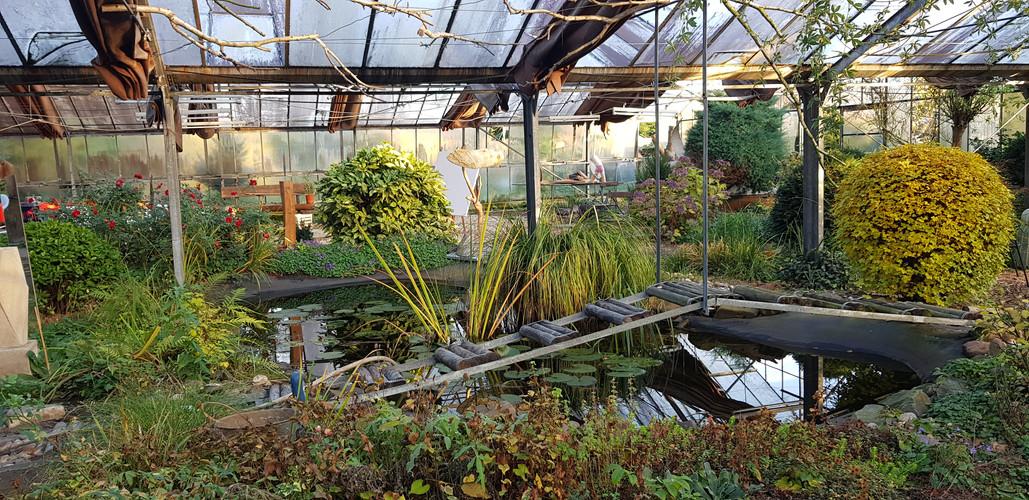 Einblick in das großen Glashaus von Barbara Ellinghaus. Ehemalige Glashausgalerie.