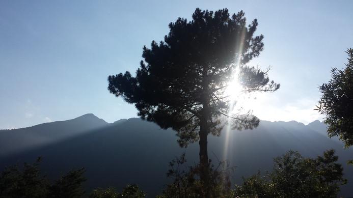 Wunderbares Licht. Sonnenschein in den Bergen.