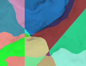 20140406 GEM4D Mesh split image 530.png