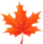 autumn-leaves-png-23480_edited.png