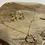 Thumbnail: Sautoir cercle doré