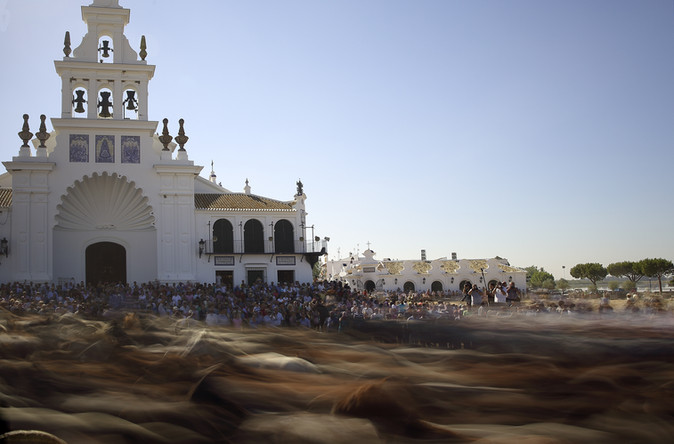 Sea of Horses
