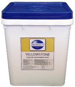Yellowstone (Ainsworth)