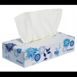 Stella Deluxe 2ply 100sht Facial Tissue – Ctn/48boxes
