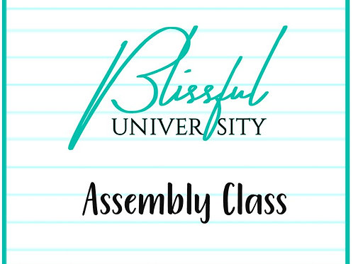 Assembly Class