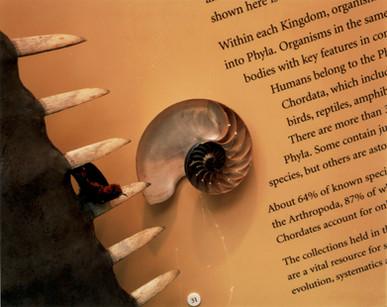 OXFORD-Museum_004.jpg