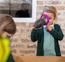 Dorset Museum shortlisted for national Family Friendly Museum Award