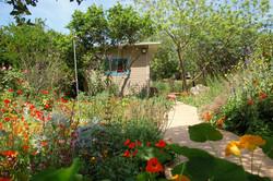 גינת פרפרים טבעית בתוך בוסתאן