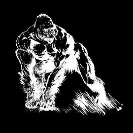 gorilla-1571329_960_720.png