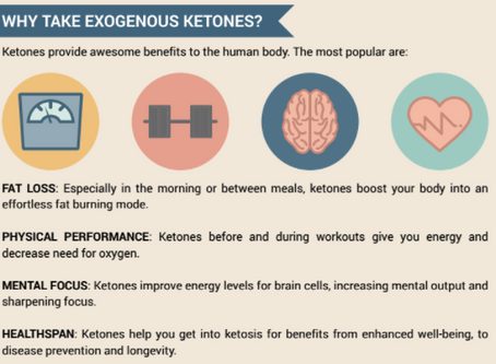 exogenous ketones + fast weight loss