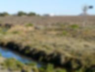 Rivier met water.jpg