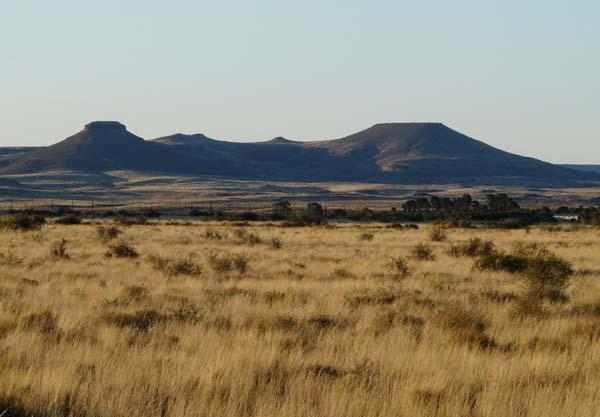 Skietfontein hills in background