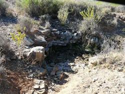 Small fountain near Skietfontein