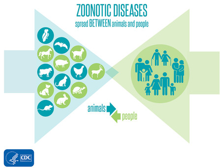 Climate Change and Zoonotic Diseases