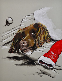 Winnie's first Christmas