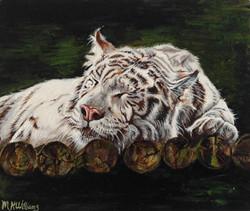 Let Sleeping Tigers...!