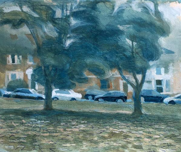 Cars Seen Through Trees