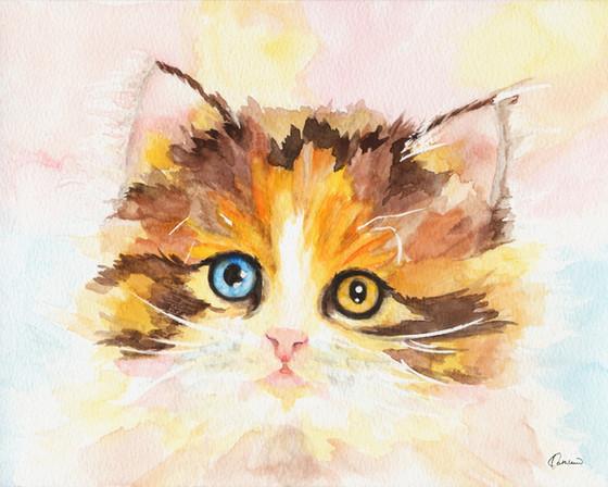 Pet - Watercolor Workshop