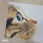 CatDrawing.jpg