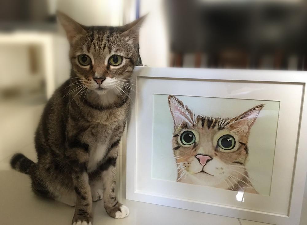 第二節-我的寵物肖像