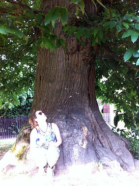 Forest Bathing with Amanda C Vesty f at Jack In The Greenuner Ancient and Sacred Trees
