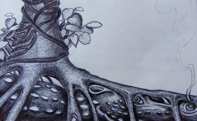 Linden Dragon By Amanda Claire Vesty