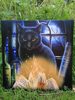 Magical Black Cat Canvas