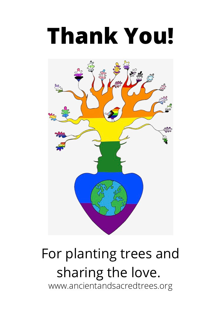 Ancient and Sacred Trees planting and protecting trees