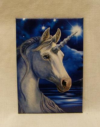 Unicorn with stars Fridge Magnet