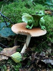 Cheshire, Toy, Shop, Magic, Fairy, Garden, Miniature, Jack In The Green, Glebe Farm, Astbury, Congleton, Staffordshire,