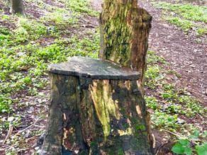 The Goblin Chair