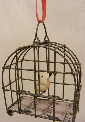 Dove in Bird Cage