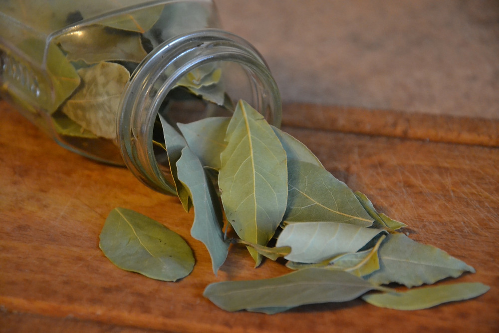 Bay leaves and a glass jar