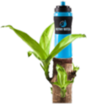 Blue Discovery Water Bottle Made from Pl
