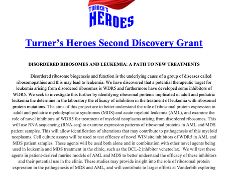 Our Second Discovery Grant