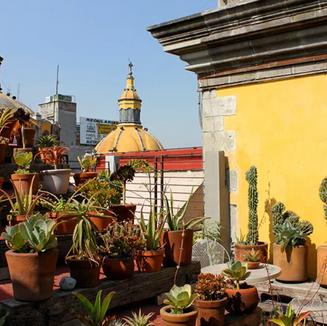 Boutique Chaya B&B Ciudad de México: Ideal para descansar y para mantenerte despierto