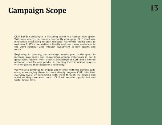 Campaign Scope