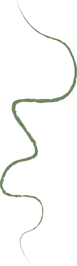 Squibly line green 3.png